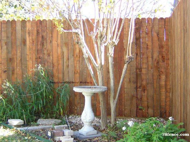 Cypress Around the Garden