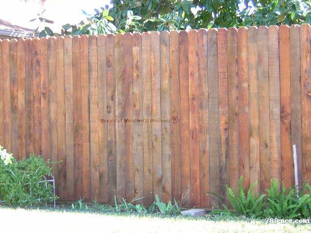 Dog Earred Cypress Fence